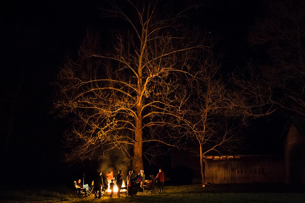 burning sycamore